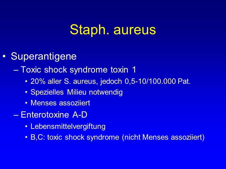 Staph. aureus Superantigene –Toxic shock syndrome toxin 1 20% aller S. aureus, jedoch 0,5-10/100.000 Pat. Spezielles Milieu notwendig Menses assoziier