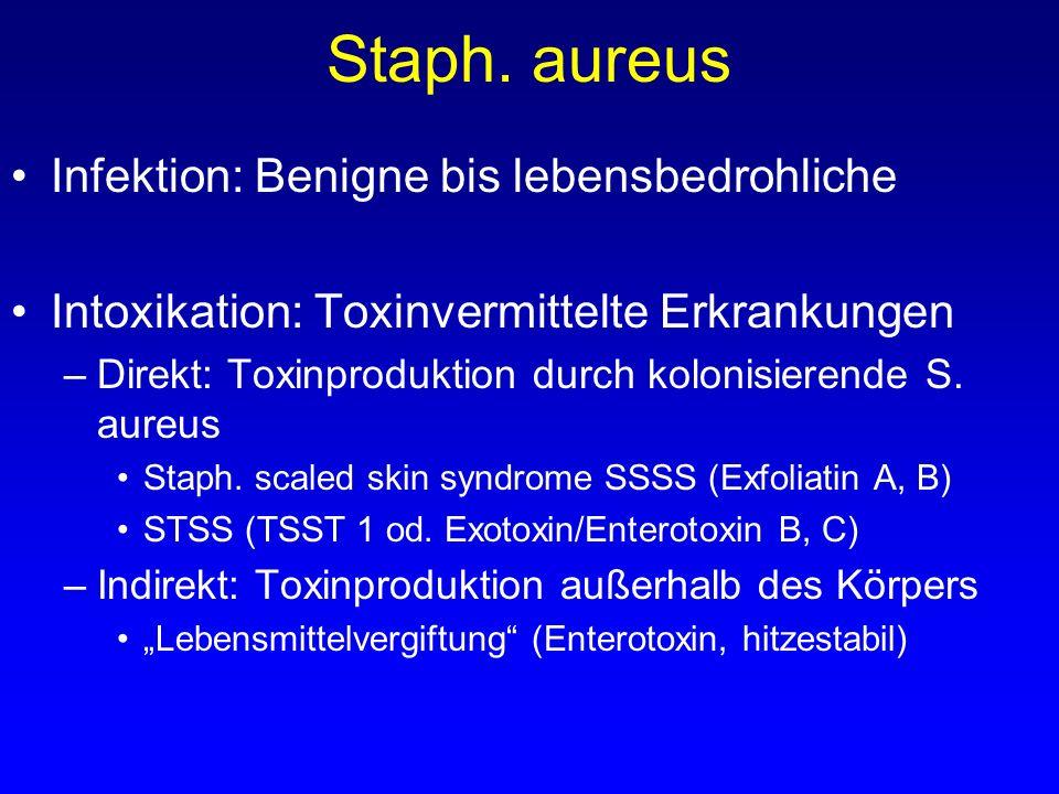 Staph. aureus Infektion: Benigne bis lebensbedrohliche Intoxikation: Toxinvermittelte Erkrankungen –Direkt: Toxinproduktion durch kolonisierende S. au