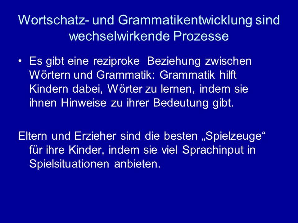 Wortschatz- und Grammatikentwicklung sind wechselwirkende Prozesse Es gibt eine reziproke Beziehung zwischen Wörtern und Grammatik: Grammatik hilft Ki