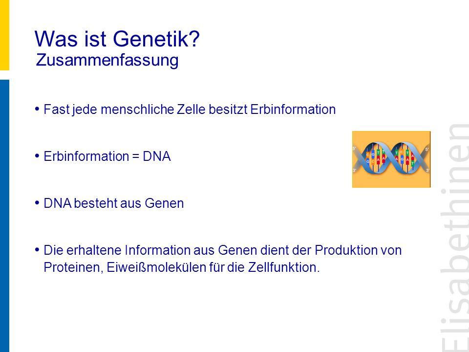 Was ist Genetik? Zusammenfassung Fast jede menschliche Zelle besitzt Erbinformation Erbinformation = DNA DNA besteht aus Genen Die erhaltene Informati