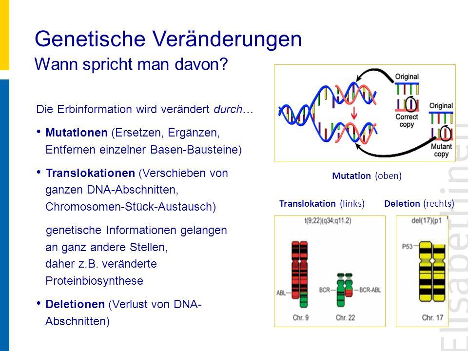 Genetische Veränderungen Wann spricht man davon? Die Erbinformation wird verändert durch… Mutationen (Ersetzen, Ergänzen, Entfernen einzelner Basen-Ba