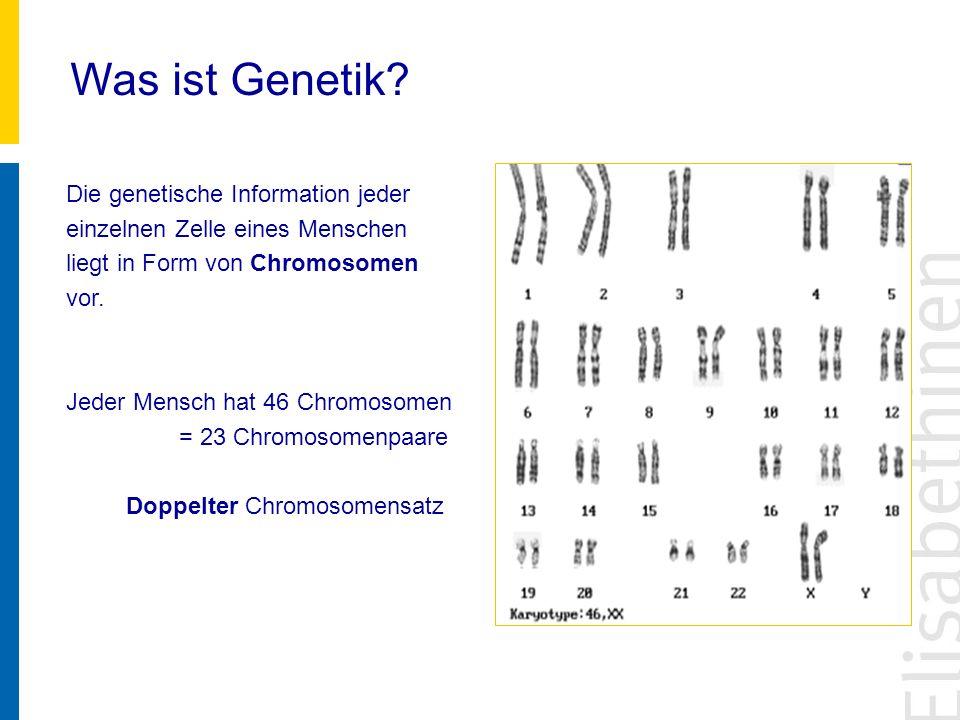 Was ist Genetik? Die genetische Information jeder einzelnen Zelle eines Menschen liegt in Form von Chromosomen vor. Jeder Mensch hat 46 Chromosomen =