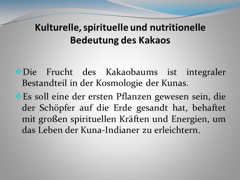 Kulturelle, spirituelle und nutritionelle Bedeutung des Kakaos Die Frucht des Kakaobaums ist integraler Bestandteil in der Kosmologie der Kunas.
