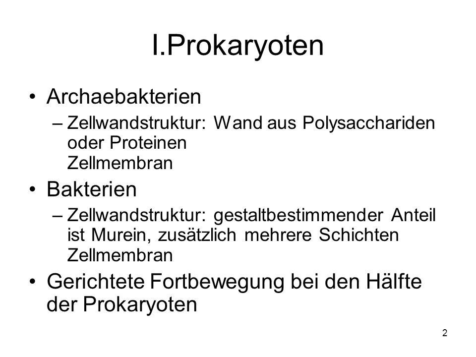 23 Protozoen Heterotroph Organismen Lebensweise: Symbionten, Kommensalen (Mitesser), Parasiten Wurzelfüßer (Rhizopoda), Wimpertierchen (Ciliata), Sonnentierchen und Strahlenfüßer (Heliozoa und Radiolarien) Schalentierchen (Foraminifera), Sporentierchen (Sporozoa), Geißeltierchen (Zooflagellata)