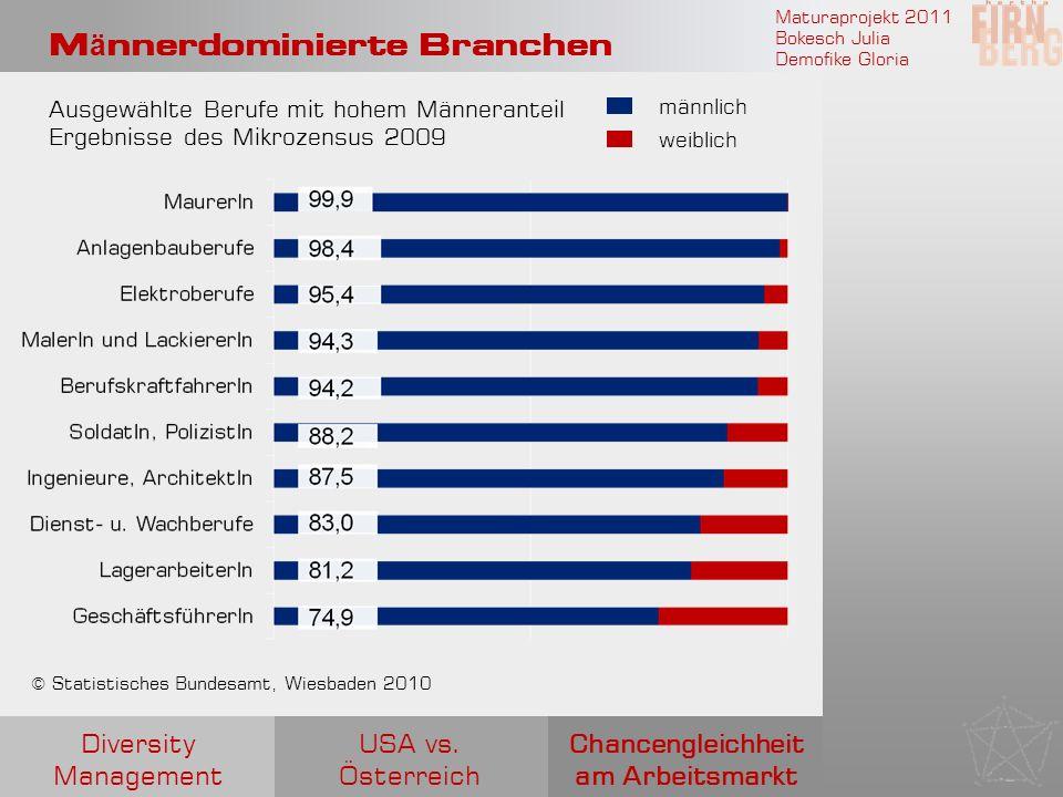 Maturaprojekt 2011 Bokesch Julia Demofike Gloria M ä nnerdominierte Branchen Chancengleichheit am Arbeitsmarkt USA vs. Österreich Diversity Management