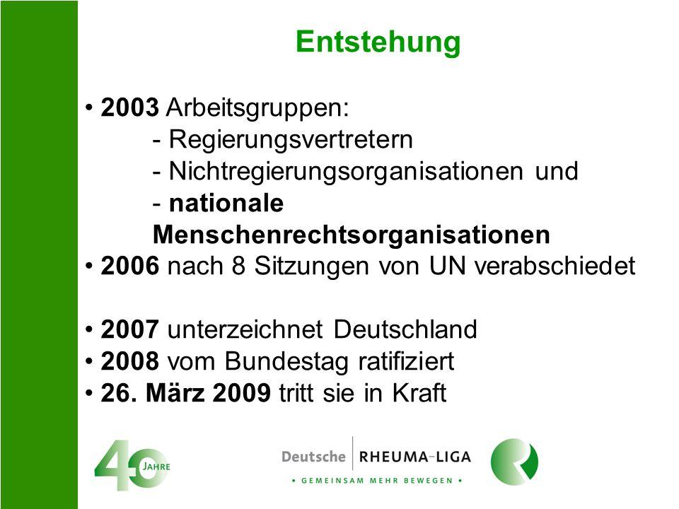 Entstehung 2003 Arbeitsgruppen: - Regierungsvertretern - Nichtregierungsorganisationen und - nationale Menschenrechtsorganisationen 2006 nach 8 Sitzun