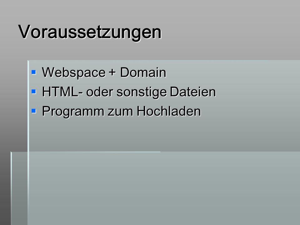 Voraussetzungen Webspace + Domain Webspace + Domain HTML- oder sonstige Dateien HTML- oder sonstige Dateien Programm zum Hochladen Programm zum Hochla
