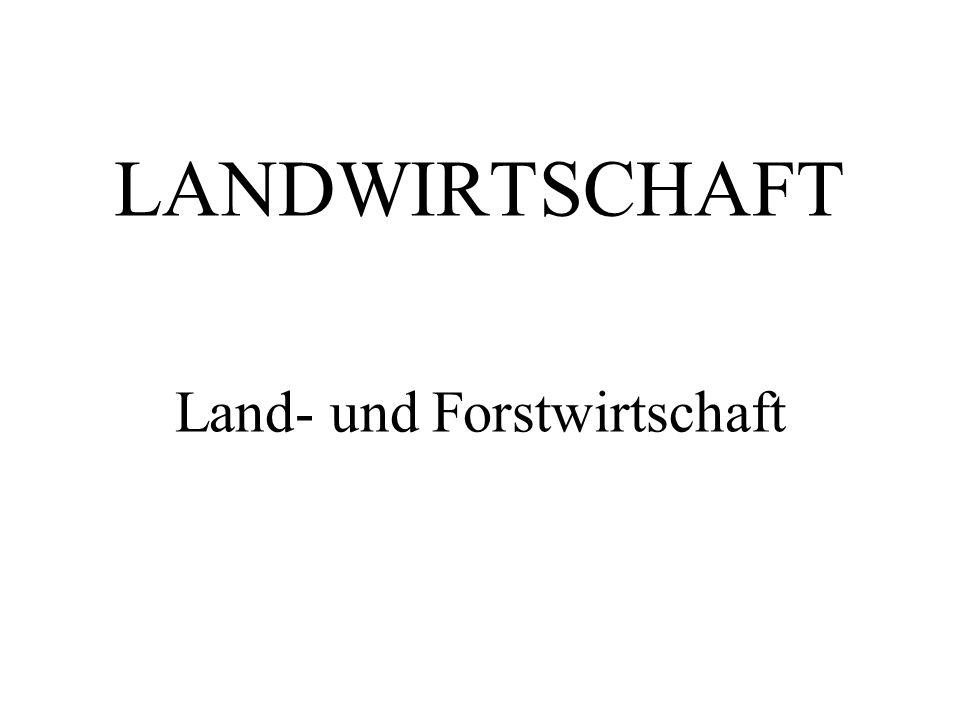 LANDWIRTSCHAFT Land- und Forstwirtschaft