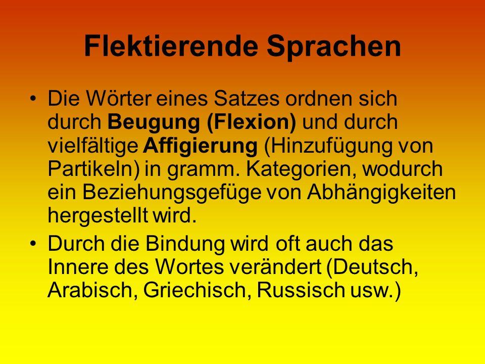 Flektierende Sprachen Die Wörter eines Satzes ordnen sich durch Beugung (Flexion) und durch vielfältige Affigierung (Hinzufügung von Partikeln) in gra