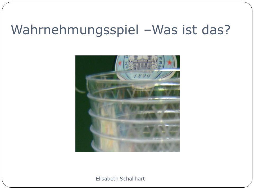 Wahrnehmungsspiel Elisabeth Schallhart