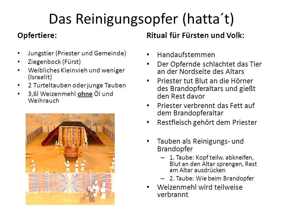 Das Reinigungsopfer (hatta´t) Opfertiere: Jungstier (Priester und Gemeinde) Ziegenbock (Fürst) Weibliches Kleinvieh und weniger (Israelit) 2 Turteltau