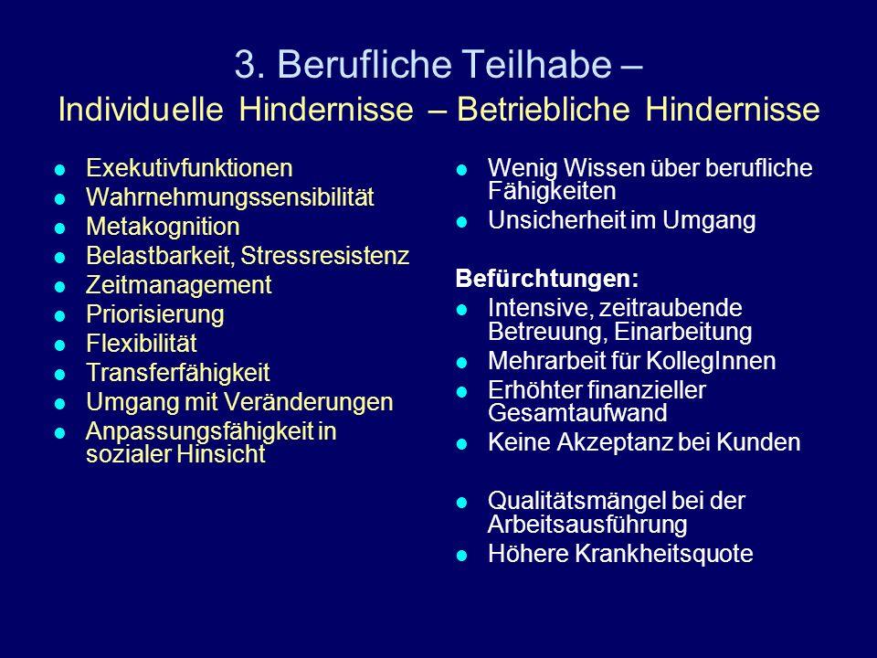 3. Berufliche Teilhabe – Individuelle Hindernisse – Betriebliche Hindernisse Exekutivfunktionen Wahrnehmungssensibilität Metakognition Belastbarkeit,