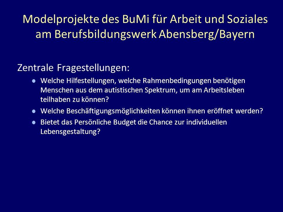 Modelprojekte des BuMi für Arbeit und Soziales am Berufsbildungswerk Abensberg/Bayern Zentrale Fragestellungen: Welche Hilfestellungen, welche Rahmenb