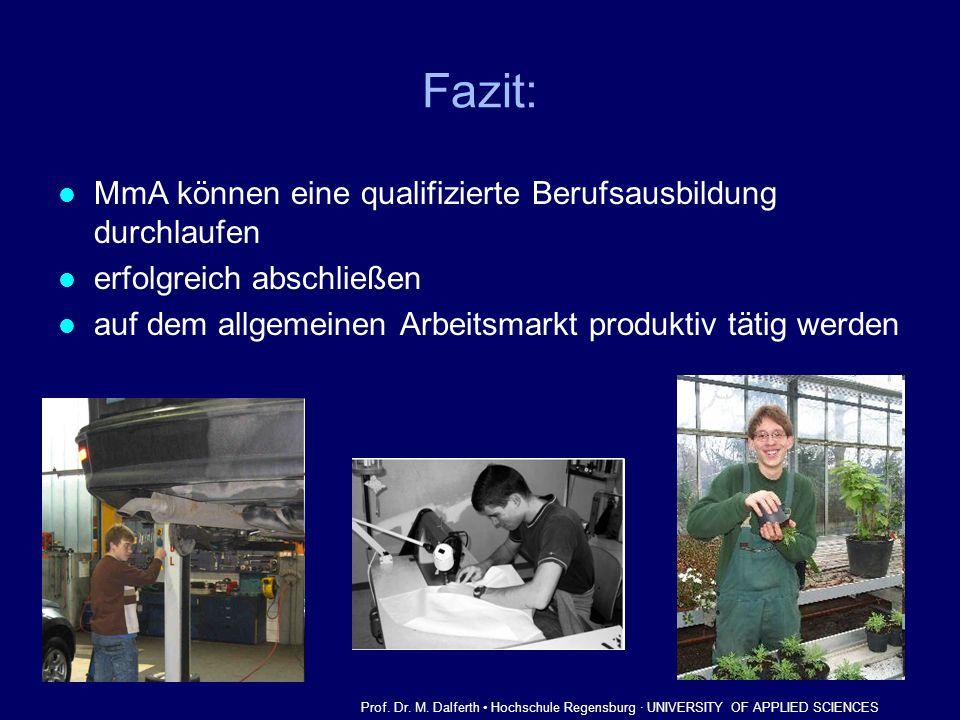 Fazit: MmA können eine qualifizierte Berufsausbildung durchlaufen erfolgreich abschließen auf dem allgemeinen Arbeitsmarkt produktiv tätig werden Prof