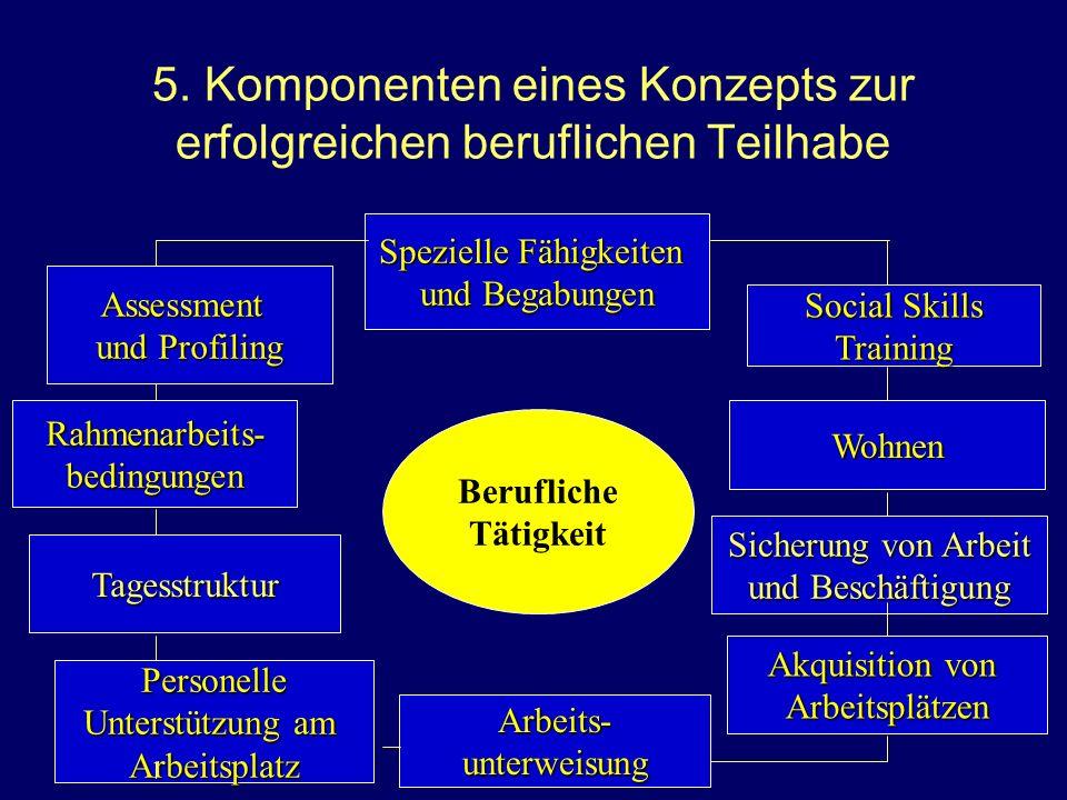 5. Komponenten eines Konzepts zur erfolgreichen beruflichen Teilhabe Spezielle Fähigkeiten und Begabungen Spezielle Fähigkeiten und Begabungen Rahmena