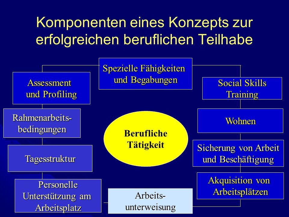 Komponenten eines Konzepts zur erfolgreichen beruflichen Teilhabe Spezielle Fähigkeiten und Begabungen Spezielle Fähigkeiten und Begabungen Rahmenarbe