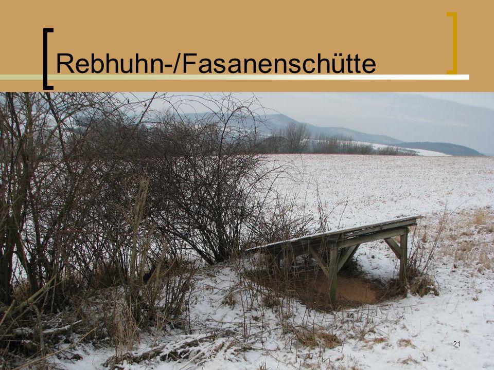 Rebhuhn-/Fasanenschütte Winterfütterung Rummendingen Kunz Bruno 26.03.2011 21