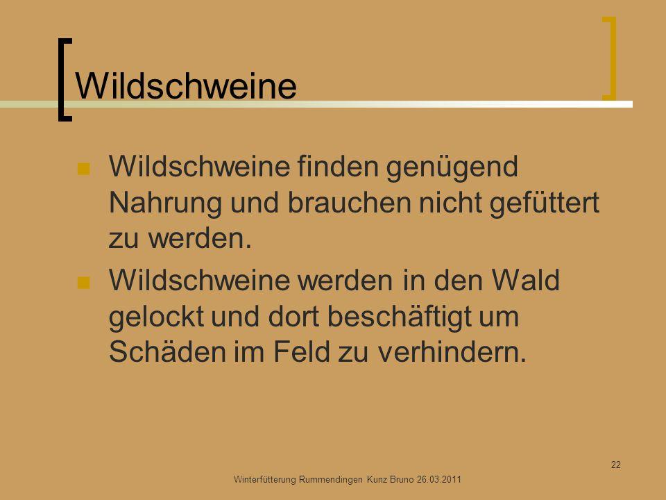 Wildschweine Wildschweine finden genügend Nahrung und brauchen nicht gefüttert zu werden. Wildschweine werden in den Wald gelockt und dort beschäftigt