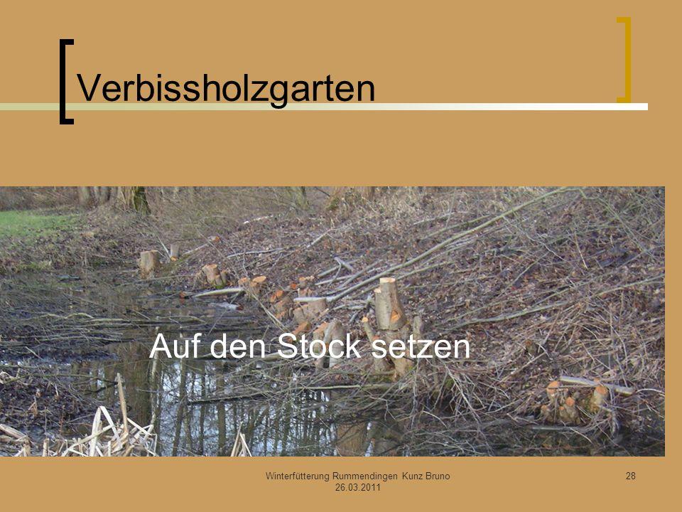 Verbissholzgarten Winterfütterung Rummendingen Kunz Bruno 26.03.2011 Auf den Stock setzen 28