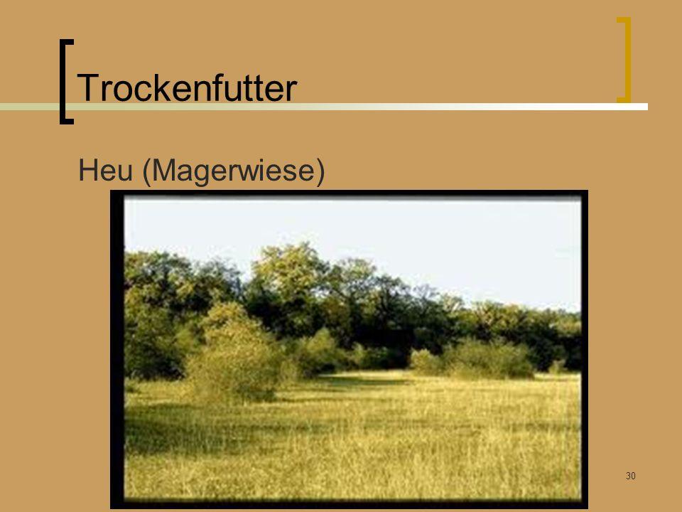 Trockenfutter Heu (Magerwiese) Winterfütterung Rummendingen Kunz Bruno 26.03.2011 30