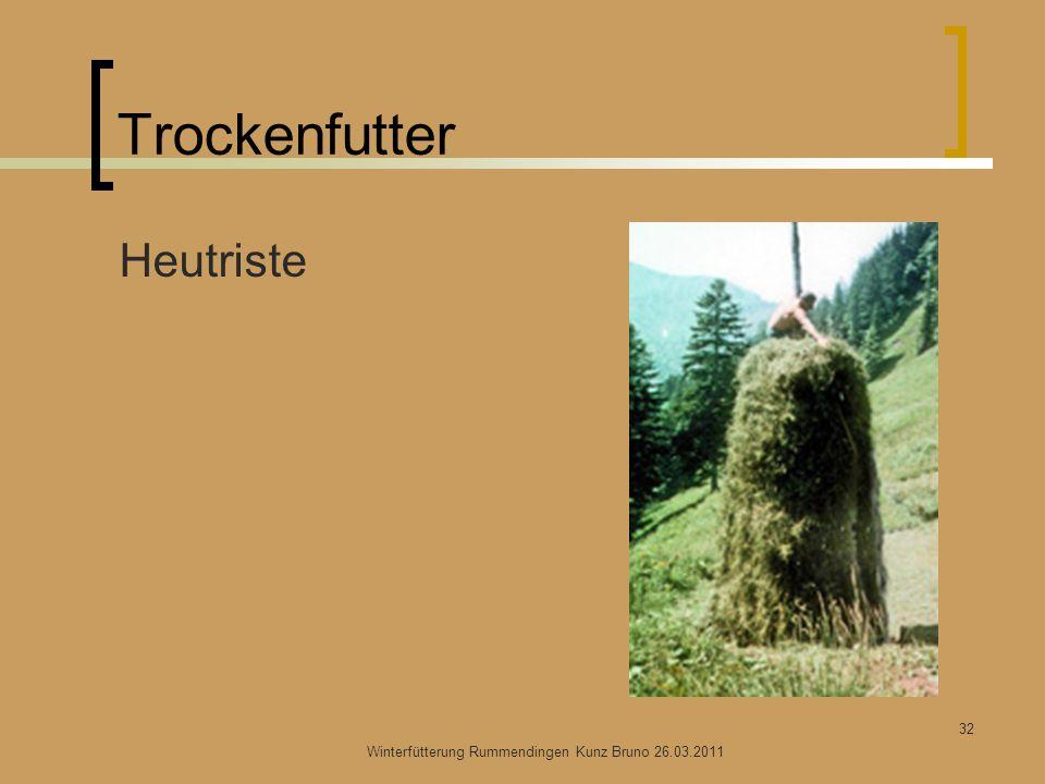 Trockenfutter Heutriste Winterfütterung Rummendingen Kunz Bruno 26.03.2011 32