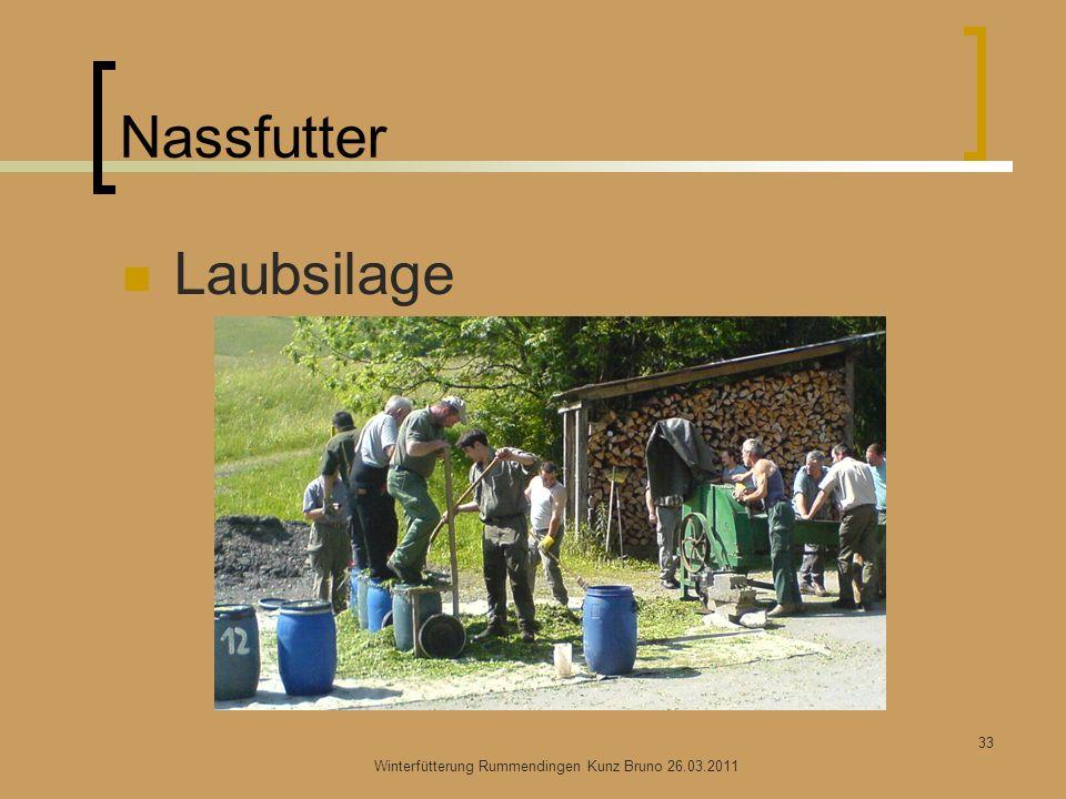 Nassfutter Laubsilage Winterfütterung Rummendingen Kunz Bruno 26.03.2011 33
