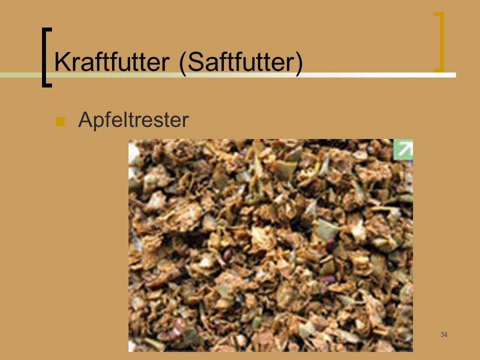 Kraftfutter (Saftfutter) Apfeltrester Winterfütterung Rummendingen Kunz Bruno 26.03.2011 34