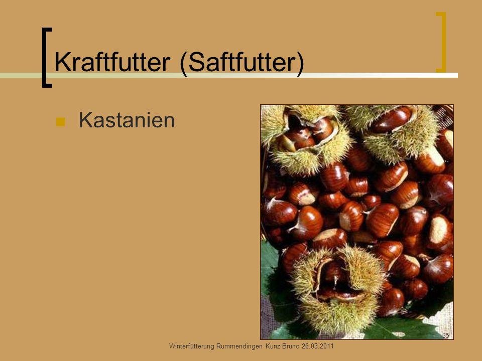 Kraftfutter (Saftfutter) Kastanien Winterfütterung Rummendingen Kunz Bruno 26.03.2011 35