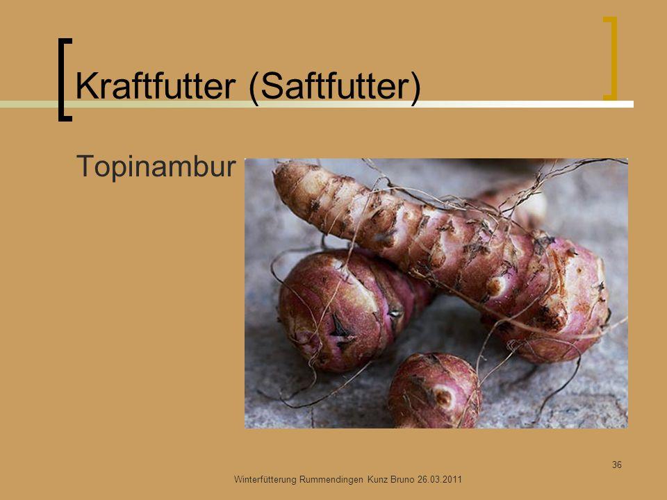 Kraftfutter (Saftfutter) Topinambur Winterfütterung Rummendingen Kunz Bruno 26.03.2011 36