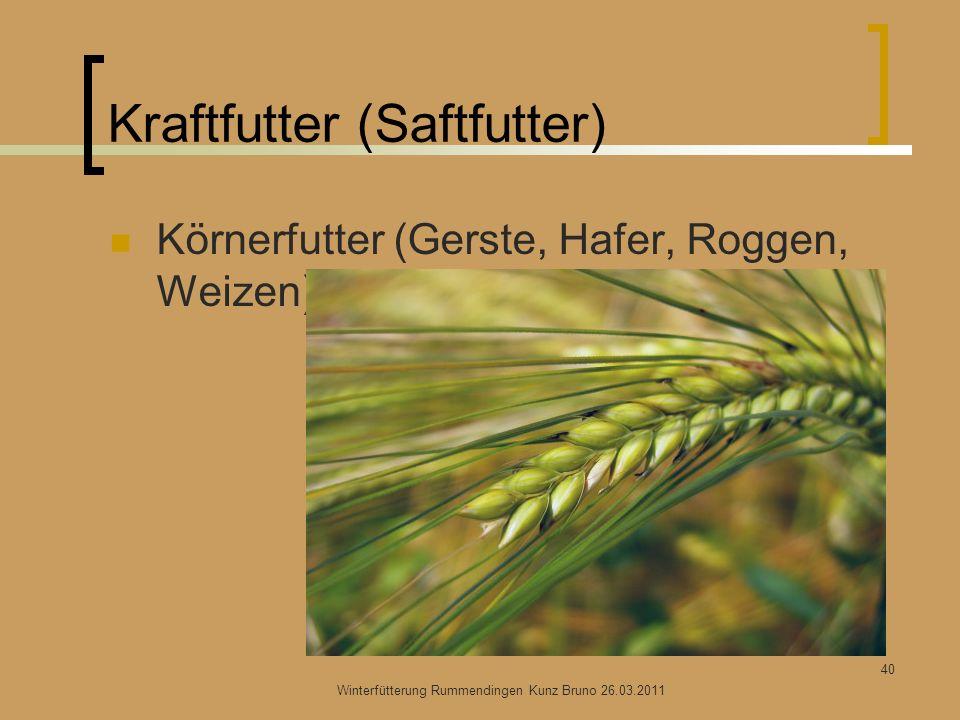 Kraftfutter (Saftfutter) Körnerfutter (Gerste, Hafer, Roggen, Weizen) Winterfütterung Rummendingen Kunz Bruno 26.03.2011 40