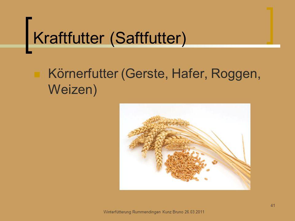Kraftfutter (Saftfutter) Körnerfutter (Gerste, Hafer, Roggen, Weizen) Winterfütterung Rummendingen Kunz Bruno 26.03.2011 41