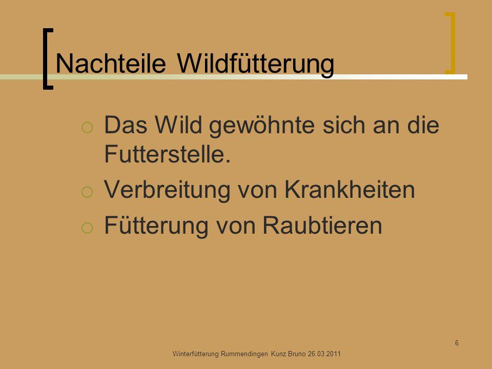 Nachteile Wildfütterung Das Wild gewöhnte sich an die Futterstelle. Verbreitung von Krankheiten Fütterung von Raubtieren Winterfütterung Rummendingen