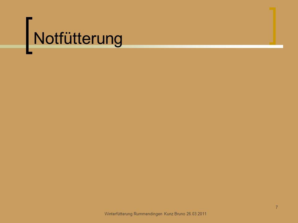 Notfütterung Winterfütterung Rummendingen Kunz Bruno 26.03.2011 7