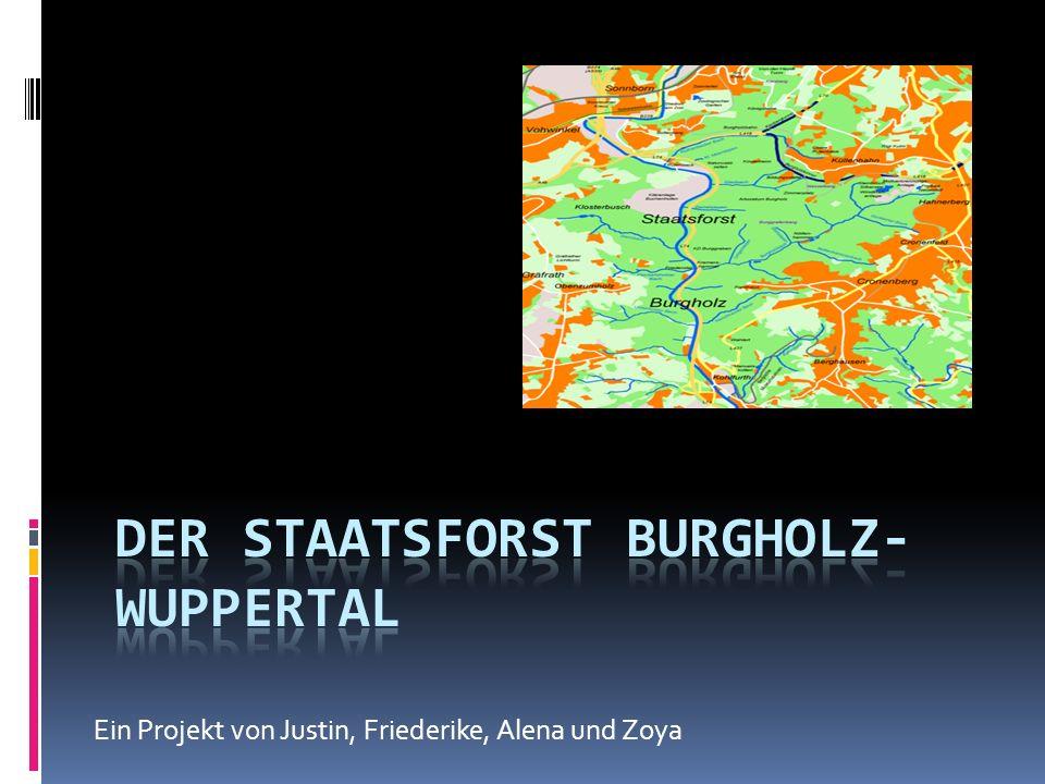 Ein Projekt von Justin, Friederike, Alena und Zoya