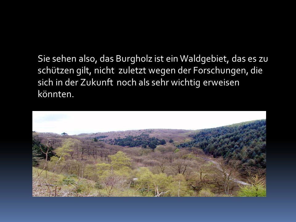 Sie sehen also, das Burgholz ist ein Waldgebiet, das es zu schützen gilt, nicht zuletzt wegen der Forschungen, die sich in der Zukunft noch als sehr wichtig erweisen könnten.