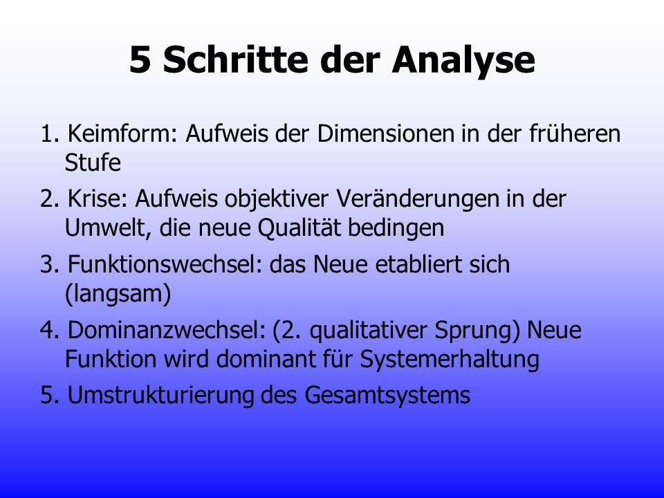 5 Schritte der Analyse 1. Keimform: Aufweis der Dimensionen in der früheren Stufe 2. Krise: Aufweis objektiver Veränderungen in der Umwelt, die neue Q