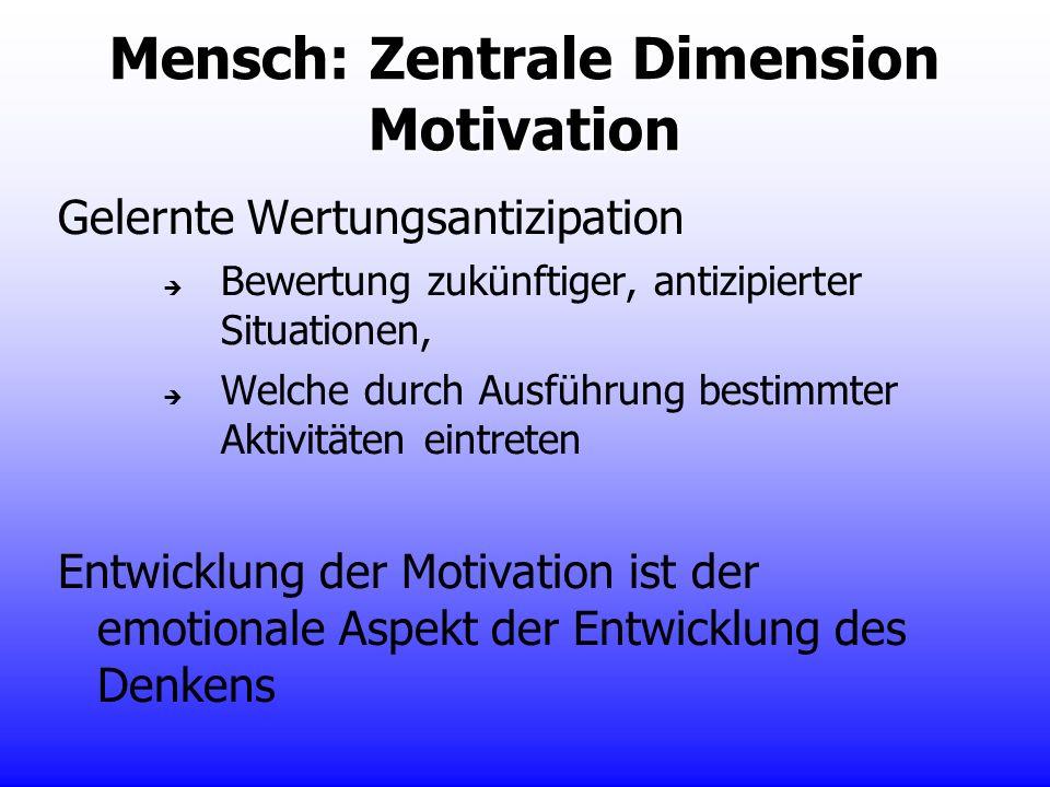 Mensch: Zentrale Dimension Motivation Gelernte Wertungsantizipation Bewertung zukünftiger, antizipierter Situationen, Welche durch Ausführung bestimmt