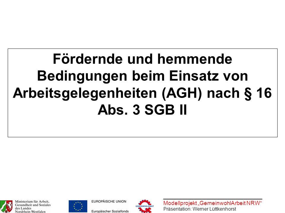 ________________________________ Modellprojekt GemeinwohlArbeit NRW Präsentation: Werner Lüttkenhorst Fördernde und hemmende Bedingungen beim Einsatz