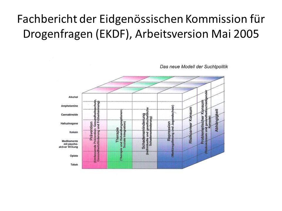 Fachbericht der Eidgenössischen Kommission für Drogenfragen (EKDF), Arbeitsversion Mai 2005