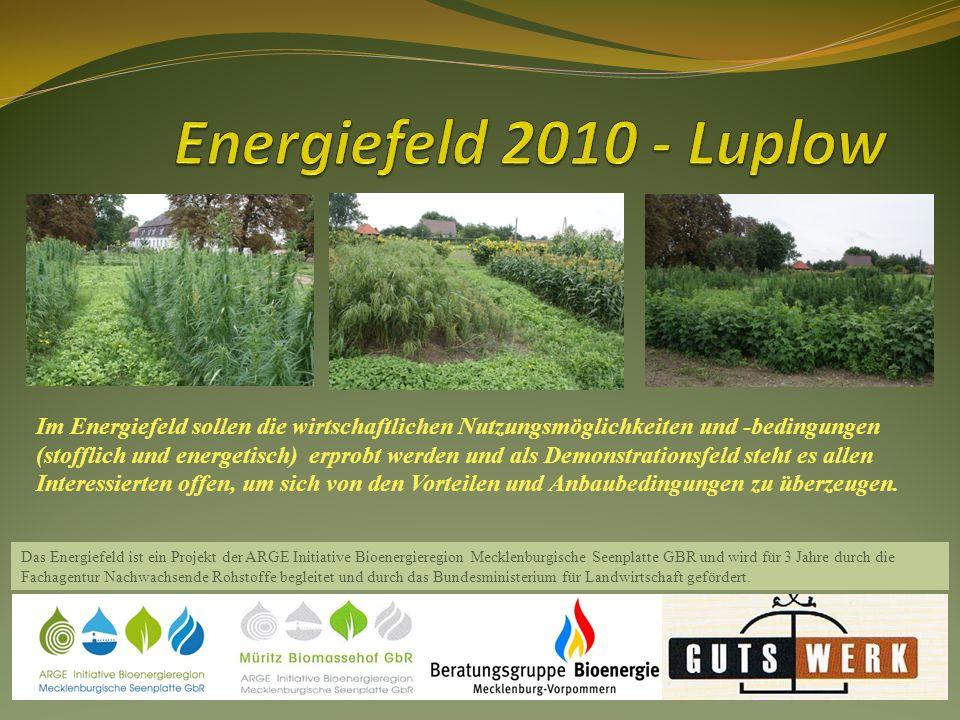 Im Energiefeld der Müritz-Biomassehof GbR werden verschiedenen Faser- und Ölpflanzen angebaut; um hier die Anbaubedingungen, Verträglichkeiten, Erträge und in Kooperation mit weiteren Akteuren die wirtschaftlichen Nutzungsmöglichkeiten und -bedingungen (stofflich und energetisch) zu erproben und Erfahrungen für eine objektive, auf eigenen Erkenntnissen beruhende Beratungstätigkeit zu sammeln..