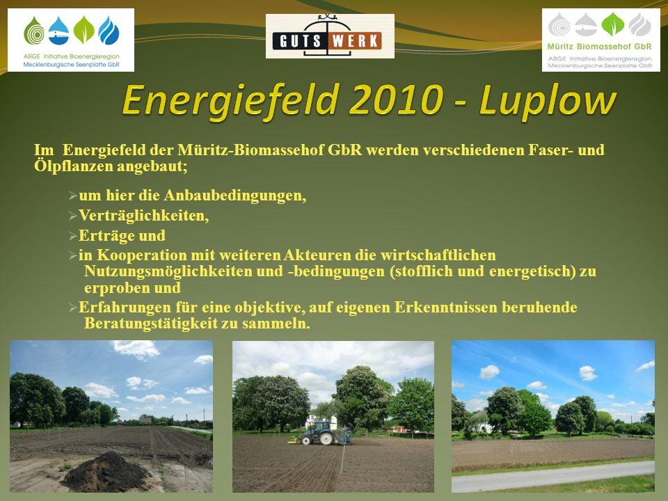 Die gesamte Anlage besteht aus dem Energiefeld mit Schaugarten in Luplow, dem Blauglockenbaum im Gutspark Luplow, dem Miscanthusfeld in Varchentin und den Feldern des Landwirtschaftsbetriebes Kastanienhof in Varchentin.