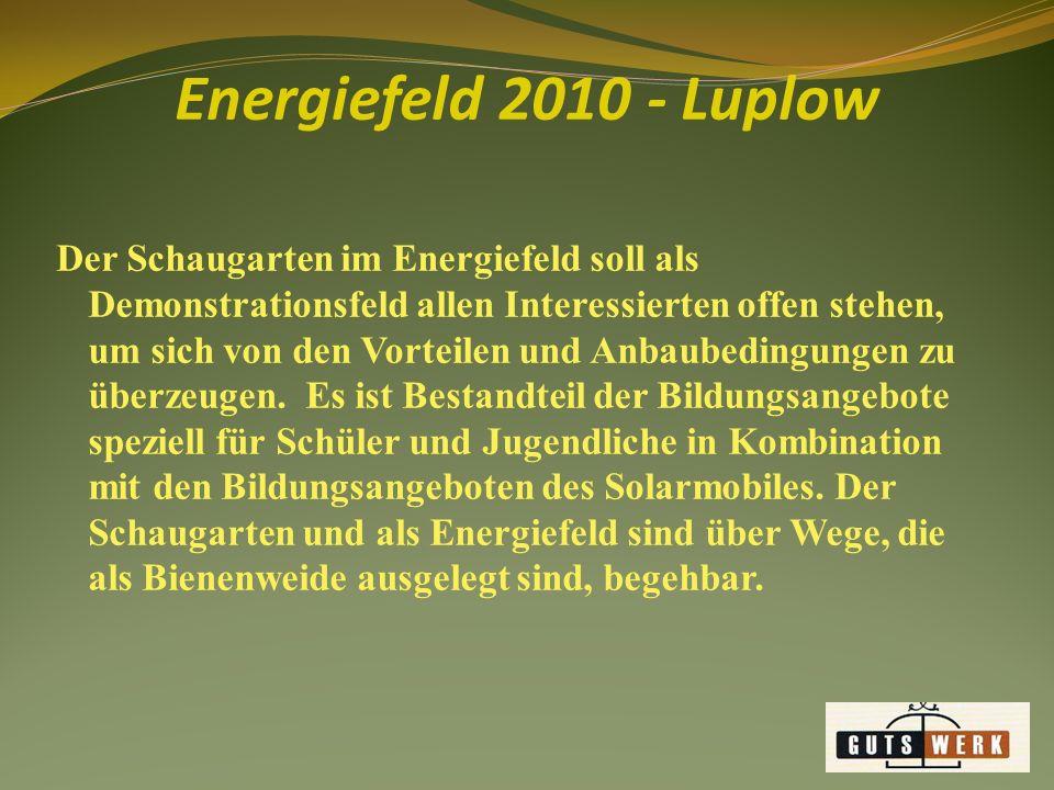 Der Schaugarten im Energiefeld soll als Demonstrationsfeld allen Interessierten offen stehen, um sich von den Vorteilen und Anbaubedingungen zu überzeugen.