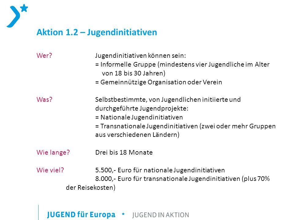 Aktion 1.2 – Jugendinitiativen Wer.
