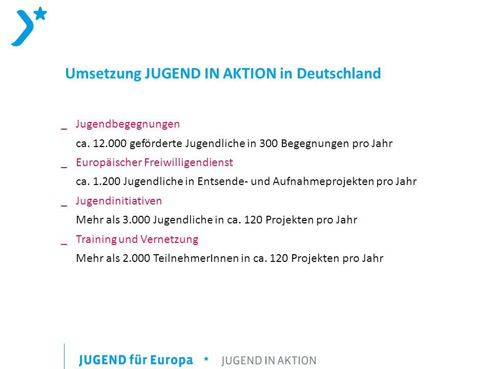 Umsetzung JUGEND IN AKTION in Deutschland _ Jugendbegegnungen ca.