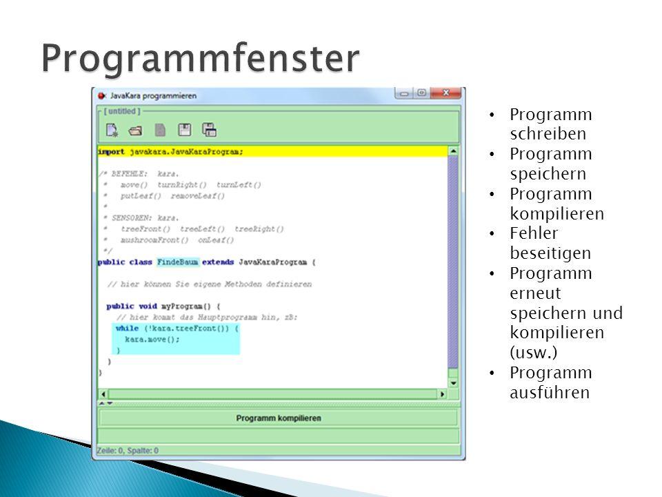 Programm schreiben Programm speichern Programm kompilieren Fehler beseitigen Programm erneut speichern und kompilieren (usw.) Programm ausführen