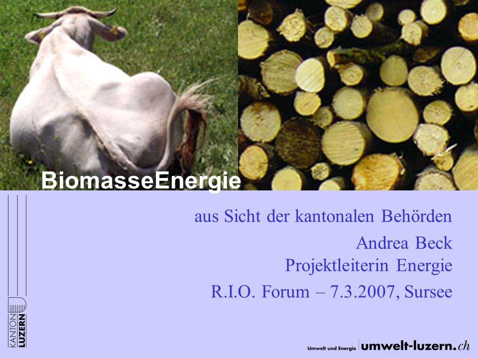 BiomasseEnergie aus Sicht der kantonalen Behörden Andrea Beck Projektleiterin Energie R.I.O. Forum – 7.3.2007, Sursee