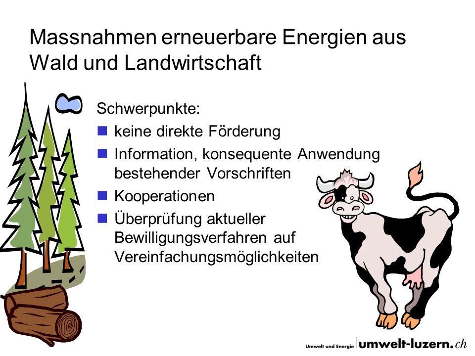 Holznutzung im Kanton Luzern Waldanteil im schweizerischen Vergleich hoch überdurchschnittliche Nutzung im Vergleich zur übrigen Schweiz Einsatz mehrheitlich in Holzschnitzelfeuerungen etwa die Hälfte des jährlich nachwachsenden Holzes bleibt ungenutzt effiziente Waldbewirtschaftung durch Eigentumsstruktur stark erschwert (12000 Waldbesitzern gehören 70 % des Waldes)
