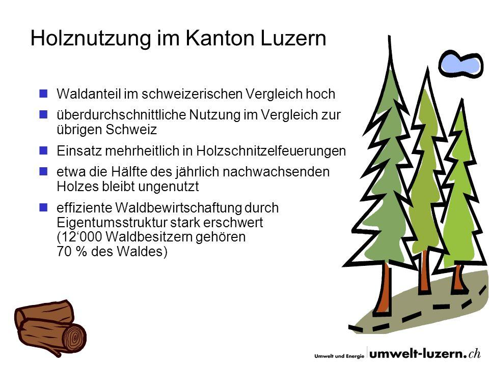 Holznutzung im Kanton Luzern Waldanteil im schweizerischen Vergleich hoch überdurchschnittliche Nutzung im Vergleich zur übrigen Schweiz Einsatz mehrh