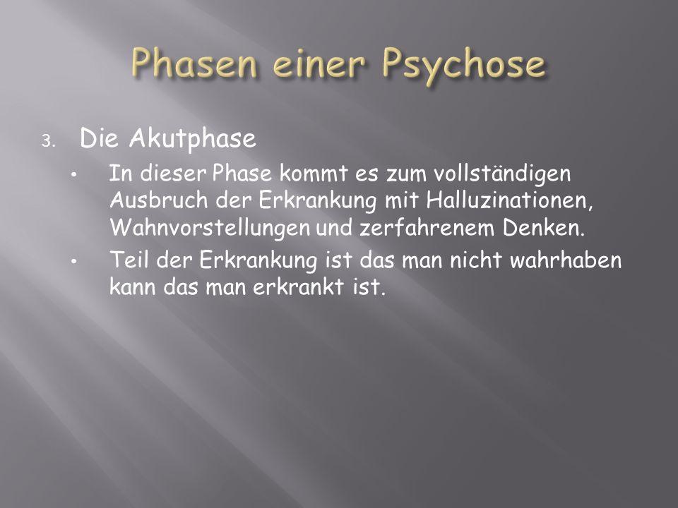 3. Die Akutphase In dieser Phase kommt es zum vollständigen Ausbruch der Erkrankung mit Halluzinationen, Wahnvorstellungen und zerfahrenem Denken. Tei