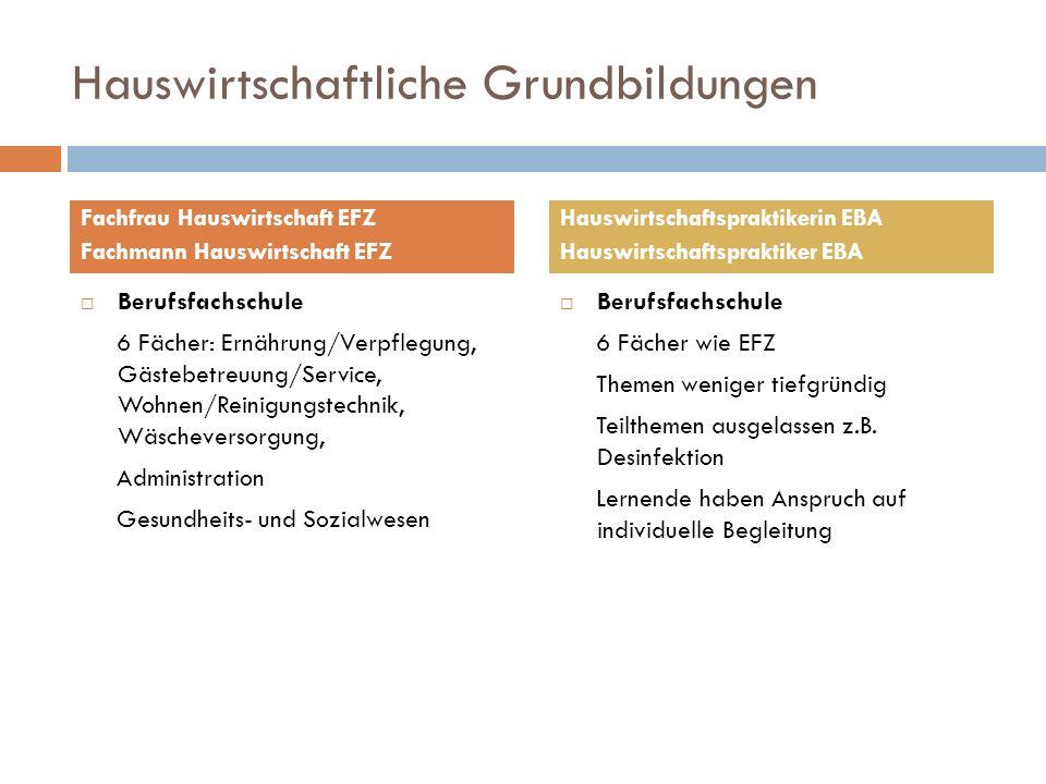 Hauswirtschaftliche Grundbildungen Berufsfachschule 6 Fächer: Ernährung/Verpflegung, Gästebetreuung/Service, Wohnen/Reinigungstechnik, Wäscheversorgun